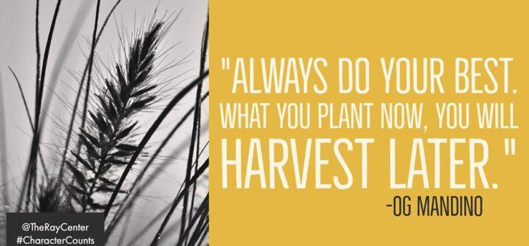 Plant now, harvest later